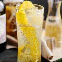 Almdudler Gastronomie Rezept Getränk The Monkey Dudler Dry Gin Zitronensaft Holundersirup