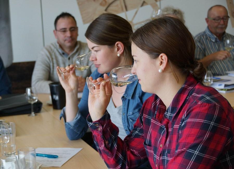 Wein riechen Seminar Menschen